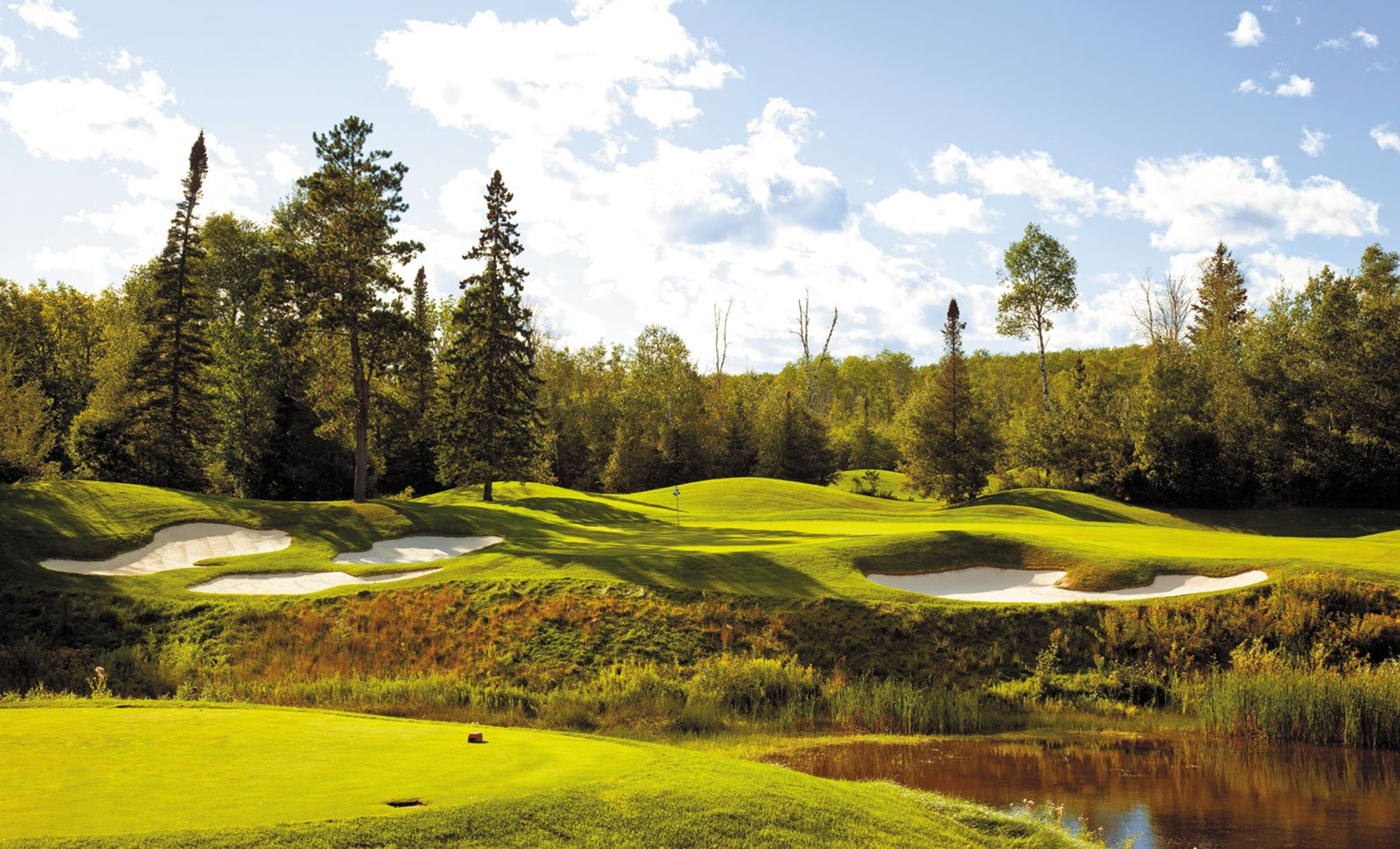 golf courses in minnesota